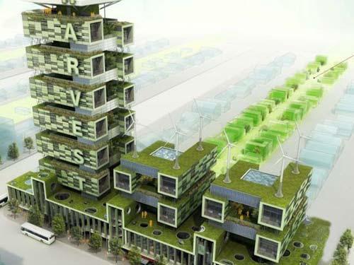 绿色收获大厦-图片1