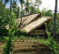 回归自然的巴厘岛原生态学校