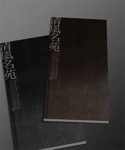 简洁中国风画册设计欣赏