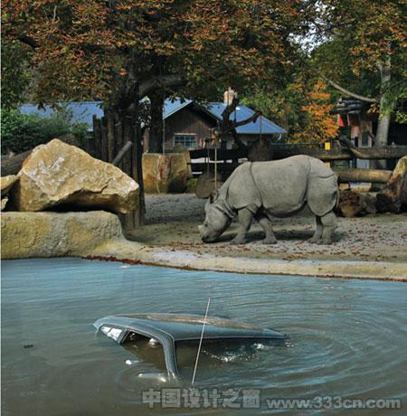 美泉宫动物园艺术与野生动物相遇
