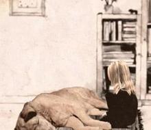德国动画《ZweiSterben》讲述死亡冥 想