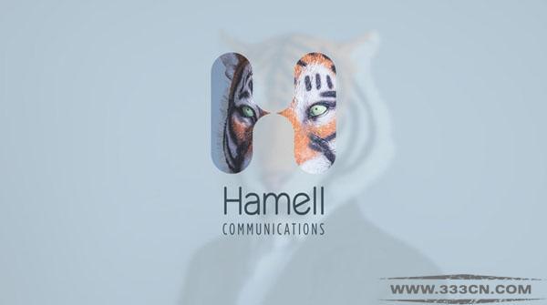 英国 医疗信息传播机构 Hamell 新LOGO