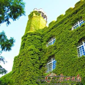 建筑垃圾 黄金 郭保生 人居环境 绿色建筑