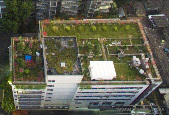 福州 5公共建筑 立体绿化 福州市民 融侨集团