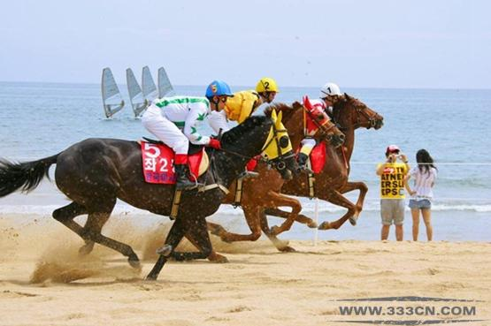 韩国 赛马主题公园 项目竞争 设计大赛 韩国永川市