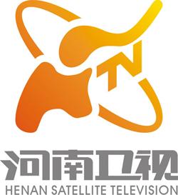 hnws old 河南卫视2012年元旦正式启用新台标