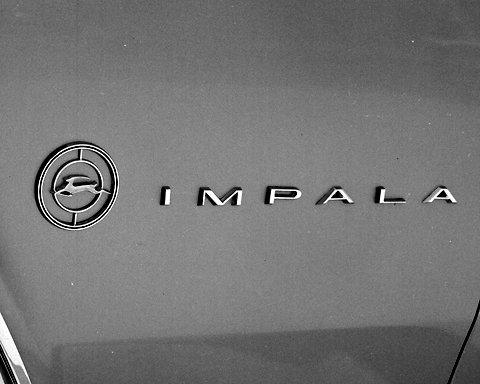 55240029201204111106427192382936136 004 动物的进化论,雪佛兰Impala标志升级