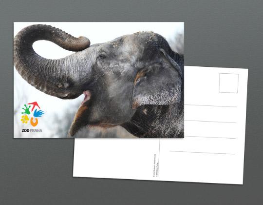 zoo praha card 布拉格动物园更换形象