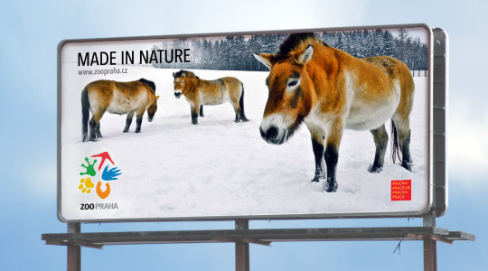 zoo praha ad 布拉格动物园更换形象