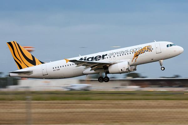 "tigerair old livery 新加坡老虎航空公司简名""Tigerair""启用新Logo"
