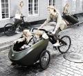 可载童车的自行车设计欣赏