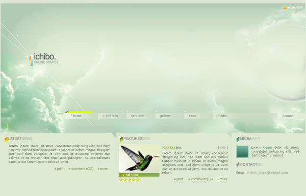 flash网站